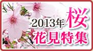 2013年上野公園・隅田公園お花見特集!