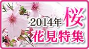 2014年上野公園・隅田公園お花見特集!