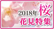 2018年上野公園・隅田公園お花見特集!
