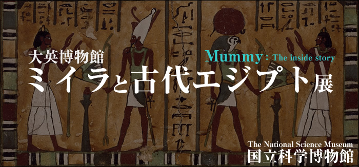 mummy_top.jpg