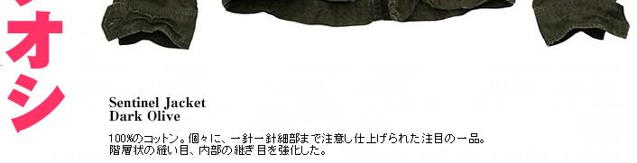 2006_11_009.jpg