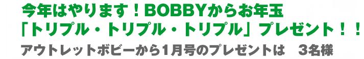 bobby_200701_013.jpg