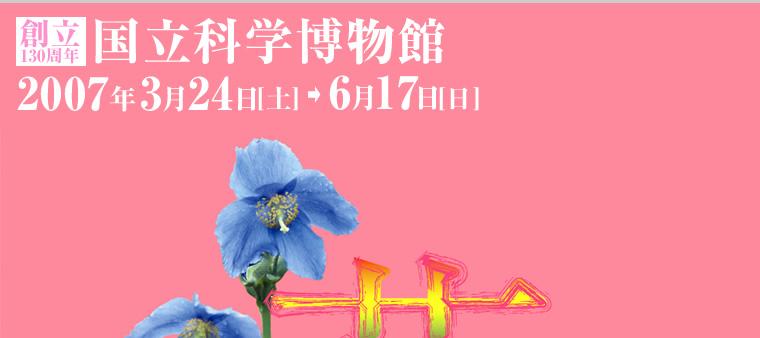 [国立科学博物館]特別展 花 FLOWER 太古の花から青いバラまで