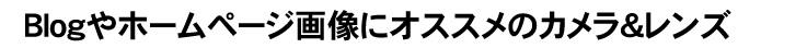 shinbashi04_tk_008.jpg