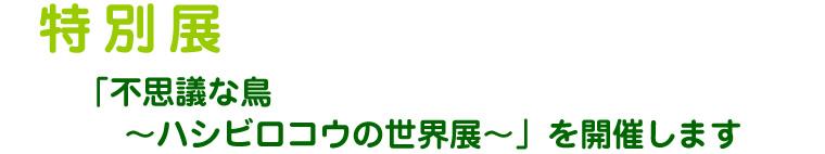 uenozoo_hasi_001.jpg