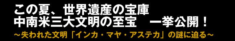 inka_kahaku_006.jpg
