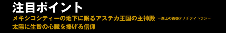 inka_kahaku_012.jpg