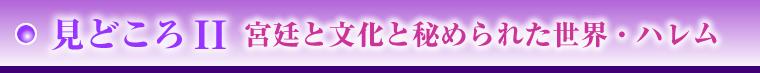 tmnam_topu_011.jpg
