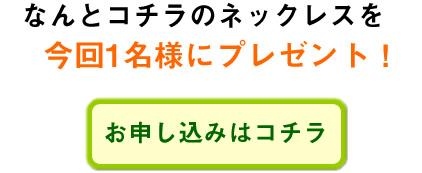 hatoya_10_014.jpg