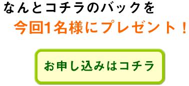 hatoya_10_037.jpg
