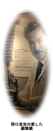 野口英世が愛した顕微鏡