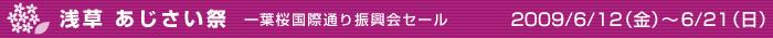 浅草 あじさい祭 一葉桜国際通り振興会セール