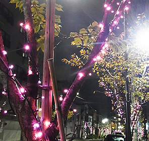 御徒町パンダ広場