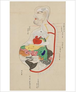 「江戸 解剖図」の画像検索結果